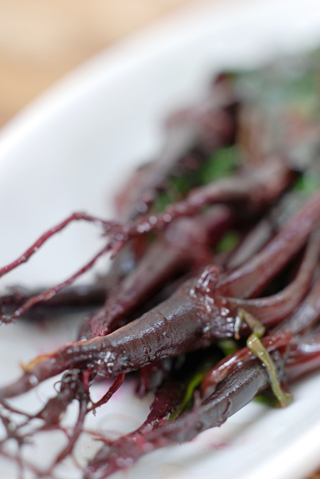Sautéed Beetroot Shoots© by Haalo