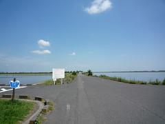 渡良瀬遊水池を渡る