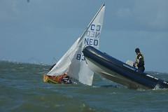 DSC_8807 (wijnbergh) Tags: sailing u4 workum cadet
