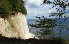 Germany; Rgen, Nationalpark Jasmund; (blacky_hs) Tags: sea sun germany coast nationalpark meer baltic roland kliff rgen sonne binz sellin sicht viktoria baabe kreidefelsen sassnitz kreide knigstuhl wissower klinken jasmund rasender
