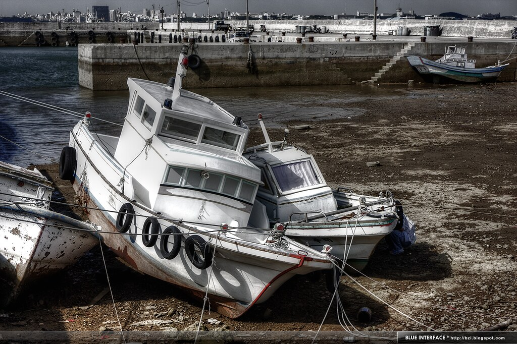 IMG_2051_tonemapped.png
