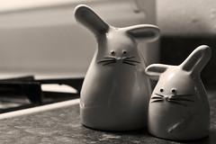 926 - culinary conejos
