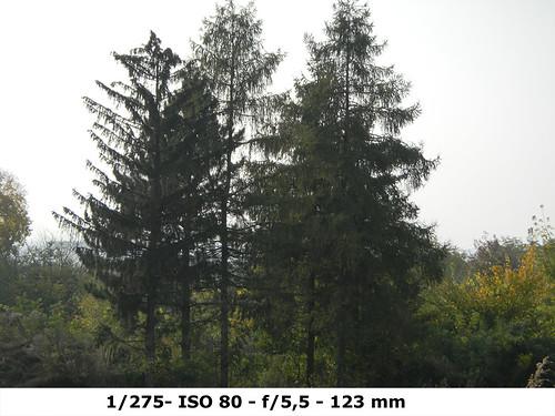 !Nikon 1000pj-test-1.275-ISO80-F5.5-MM123 copy