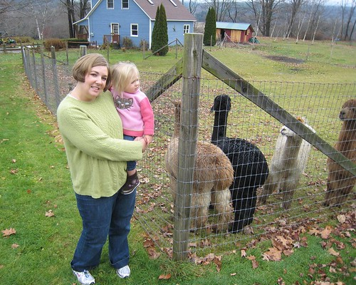 Allison & Eva with Alpacas