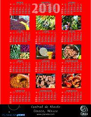 2010 calendar (red)
