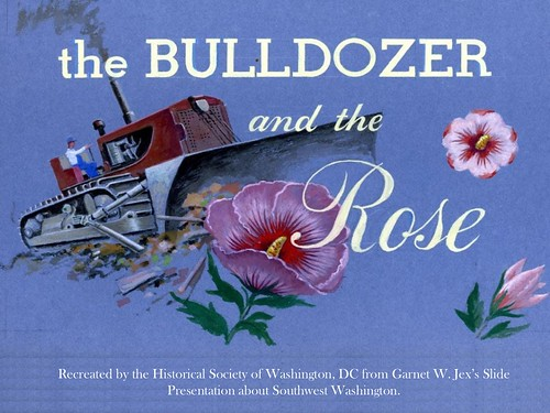 Bulldozer-and-the-Rose