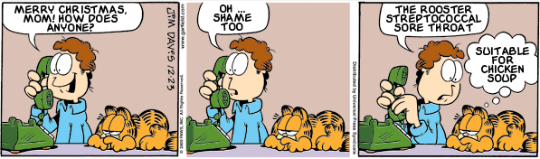 Garfield: Lost in Translation, December 23, 2009