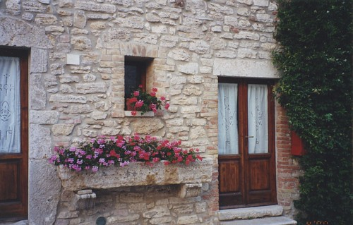flowers in a flowerbox, rustic wall, Italy