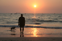 Baga Sunset. Goa. (konstantynowicz) Tags: sunset sea dog india reflection beach silhouette puppy tide goa wave tranquil baga