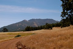 Mt. Diablo State Park - Part of the Diablo Range from Murchio Rd.