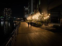 Harbor Way (H.H. Mahal Alysheba) Tags: night wide snapshot light water people tokyo japan harbor lumix gx7 canon 1022mmf3545