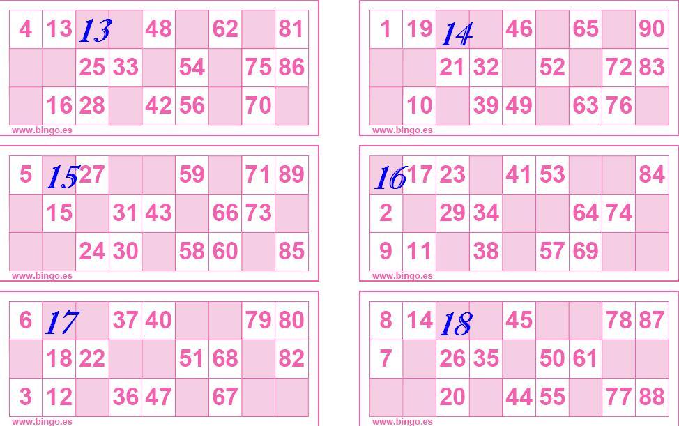 Was Kostet Ein Bingo Los