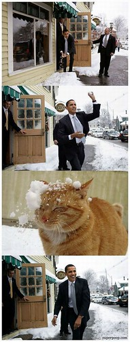 snowbama1