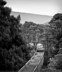 Around the Bend (Nieblung) Tags: train nikon ns tripod d200 50mmf18d norfolksouthern af50mmf18d norfolksouthernrailroad emptycoalcars railfanbridge