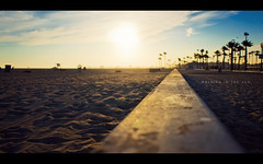 Walking in the Sun (isayx3) Tags: california trees sunset beach evening sand nikon dof angle bokeh wide perspective palm travis 24mm nikkor huntingtonbeach f28 d3 utstandingimages