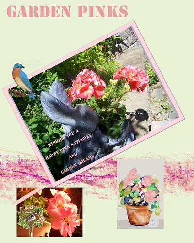 garden-pinks