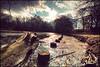 Berlin - Tiegarten Icy lake (Manlio Castagna) Tags: lake berlin germany sigma 1020mm hdr manlio berlino tiegarten manliok