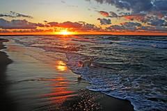 "Sunset by the sea (Ingrid0804) Tags: friends sunset sea sky dog clouds goldenretriever waves september soe kattegat supershot odsherred anawesomeshot colorphotoaward superaplus aplusphoto theunforgettablepictures theperfectphotographer 100commentgroup virtualjourney saariysqualitypictures ""flickraward"""