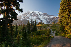 Magic Trail to a Magic Mountain (cooler than h2o) Tags: mountain snow washington northwest scenic hike trail cascades mtrainier alpinemeadow eveninglowlight