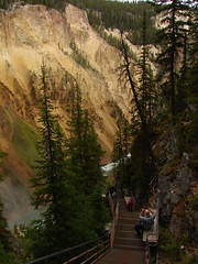 Into the Grand Canyon of the Yellowstone
