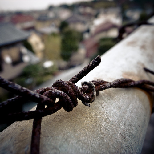 Gloomy Barbed Wire