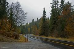 A Day In The Rain,   Wonderful (jimgspokane) Tags: autumn fall mtspokane onlythebestare