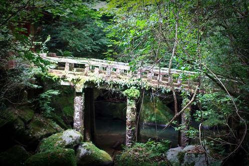 08.10 Jigenji Park - Kagoshima 2