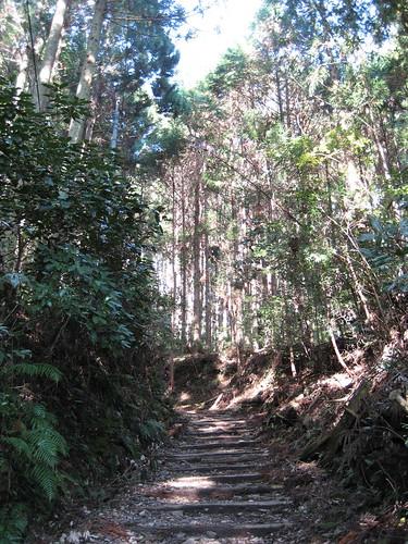 秋葉山ハイキング(その4)