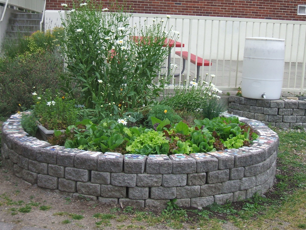 School garden raised bed