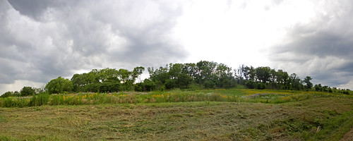 EmiquonPrairieRidge07072009JGW_Panorama1