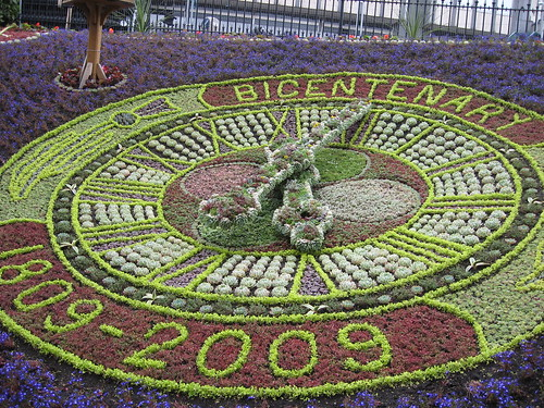 Floral Clock by Dreln.