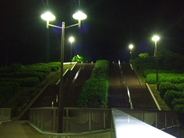 広島 竜王公園 夜景3