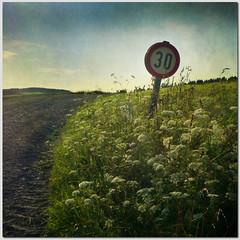 30 (pixel_unikat) Tags: summer plant grass sign 30 way square landscape austria frame trafficsign textured muehlviertel 500x500 memoriesbook multimegashot thankstoskeletalmessfortexture