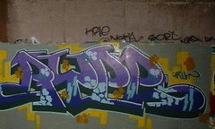 rype02 (Metroburner) Tags: newcastle graffiti