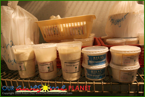 Rizal Dairy Farms-5