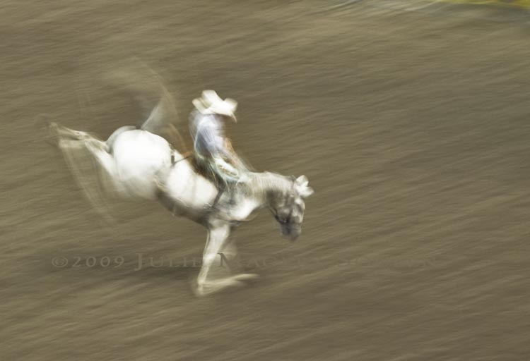 motion blurred cowboy riding bronc at rodeo