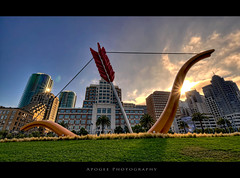 Cupid's Span (Apogee Photography) Tags: sf sanfrancisco california ca sun love grass skyline architecture photoshop buildings nikon bow embarcadero arrow proposal cupidsspan hdr cupidsbow 10mm rinconpark photomatix tonybennet d5000 1024mm leftmyheart 1024mmf3545 nikond5000 1024mmf3545g nikon1024mmf3545 1024mmf3545ged