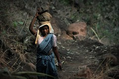 At the cave: construction worker. India (fredcan) Tags: travel woman india forest walking path stones indian country jungle labour worker remote constructionsite slavery dignity southasia ignored humancondition poorpeople centralindia chhattisgarh cheaplabour indiansubcontinent 50milionmissing unchangedindia carryingstones