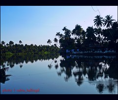 Puzha (River) (SubinKallingal) Tags: trees sky india reflection nature reflections river landscape lumix canal bluesky kerala panasonic coconuttree thrissur fz50 godsowncountry incredibleindia puzha subinkallingal