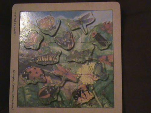 bug puzzle
