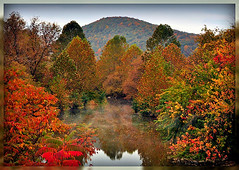 Ives Run in Fall (pinecreekartist) Tags: chiaramonte wellsboropa theunforgettablepictures onlydayoff pinecreekartist tiogacountypachiaramonte