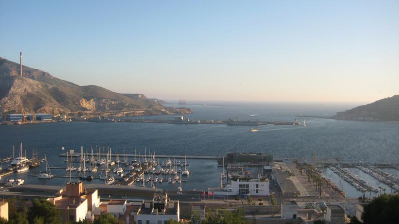 Wild Tigris - Cartagena harbor