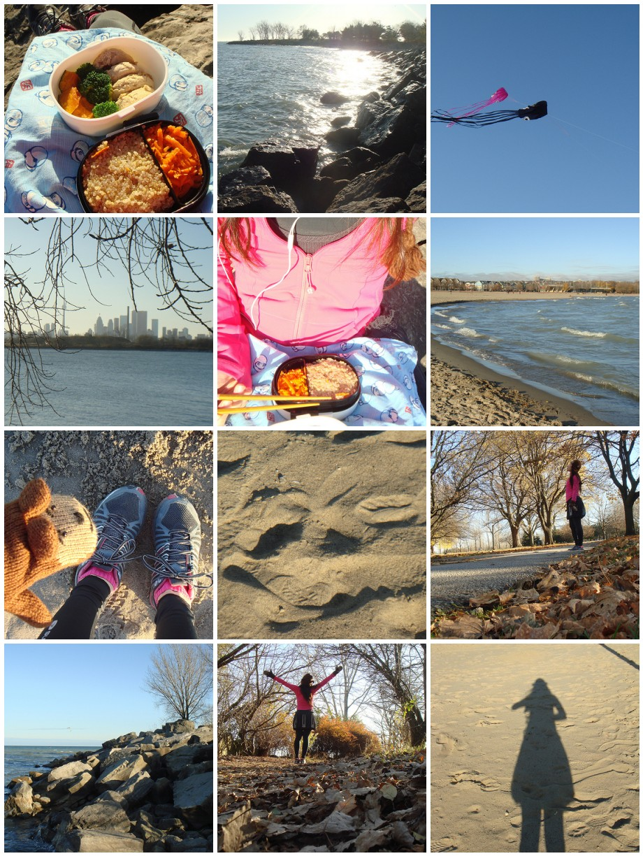 Late Autumn Picnic At The Beaches