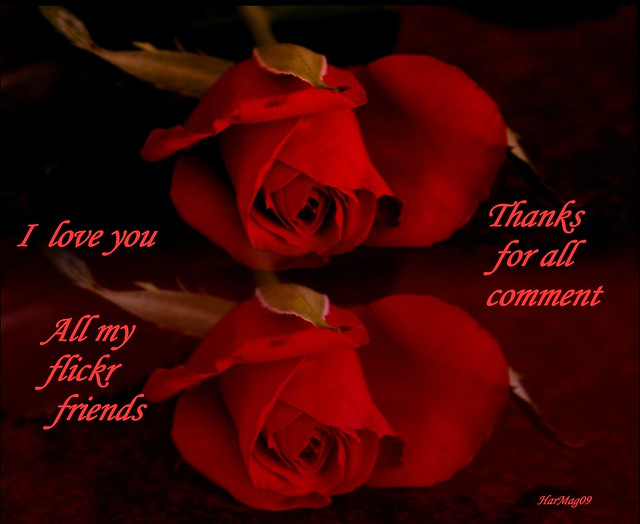 tula_7755; I love you too Dear Friend! - tula_7755