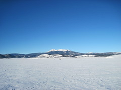 View to the West Across The Lake (fethers1) Tags: trout icefishing rainbowtrout anteroreservoir