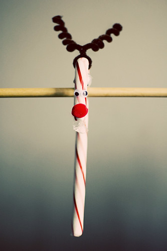rudolph candy cane [3]