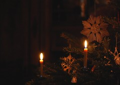 Silent Night... (monika & manfred) Tags: vienna austria mm beeswaxcandles merrychristmastoall msh1209 andonearthpeace christmas2009 msh120917 traditionaldecorationsontree