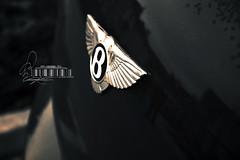 Bentley.. (- M7D . S h R a T y) Tags: continental gt luxury bentley blackcolor wordsbyme bentleylogo allrightsreserved  bentlylogo