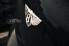 Bentley.. (- M7D . S h R a T y) Tags: continental gt luxury bentley blackcolor wordsbyme bentleylogo ®allrightsreserved™ بنتلــي bentlylogo