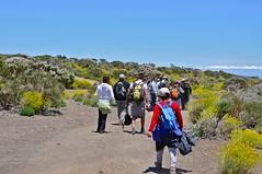 El grupo caminando. Fundacin Tenerife Rural